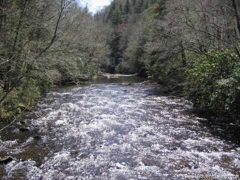 The Nantahala River - Premier Trout Fishing And Cabin Rentals In N.C.