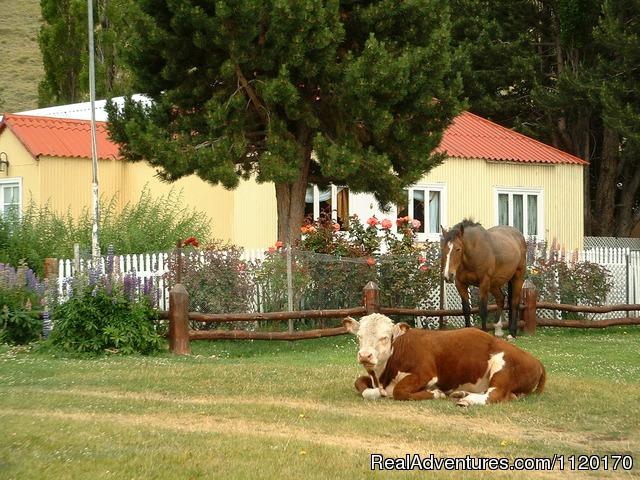 Garden - Estancia La Quinta, Argentinian Patagonia