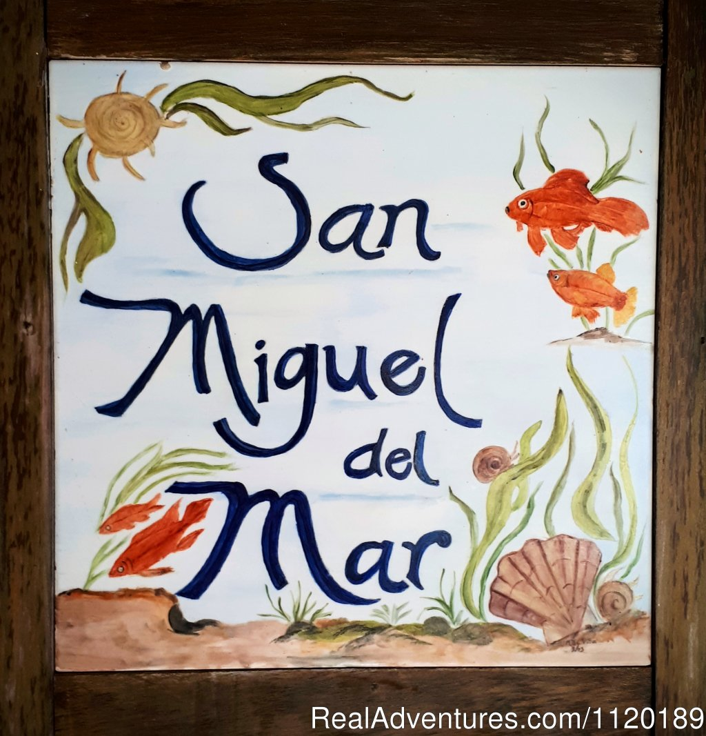 Welcome to San Miguel del Mar
