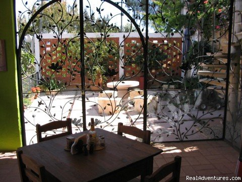 View from kitchen to your patio | Image #4/4 | Cooking classes in Oaxaca, Mexico