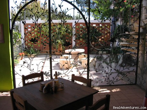 View from kitchen to your patio - Cooking classes in Oaxaca, Mexico