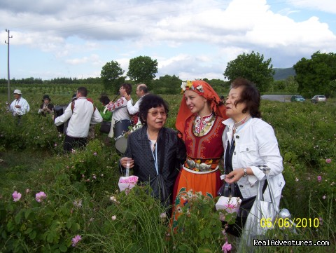 Rose Festival  - Enjoy Bulgaria with our Special Interest Tours.