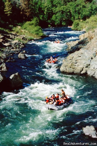 California Whitewater Rafting with All-Outdoors