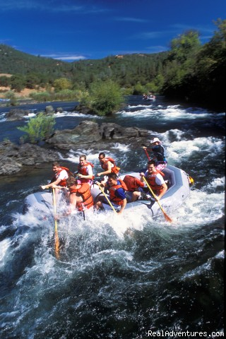 American River - California Whitewater Rafting with All-Outdoors