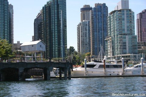 Image #10/10 | Coal Harbour Downtown Vancouver Luxury View condo