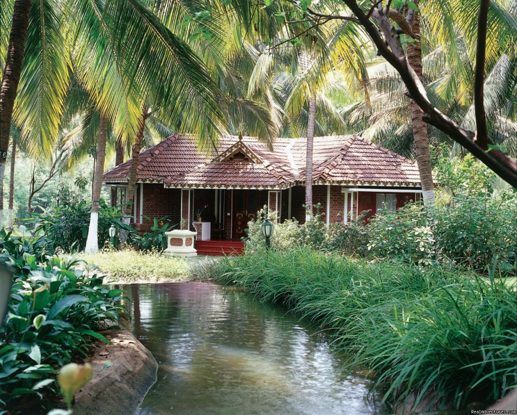 Kairali Ayurvedic Health Resorts is pioneer in Ayurveda & a major contributor towards making Ayurveda popular across the Globe. We are a reputed name in hospitality industry with years of credible service.