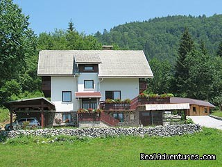 House - Apartment Brglez Bled