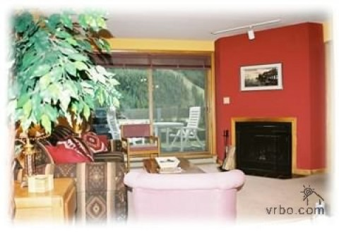 Keystone Cozy Condo 2bd/2ba Walk to slopes: Living Area/wood-burning fireplace/views