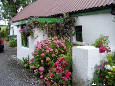 Holiday by the River Shannon in Ireland: Chestnut Cottage