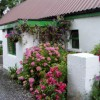 Holiday by the River Shannon in Ireland Vacation Rentals Banagher, Ireland