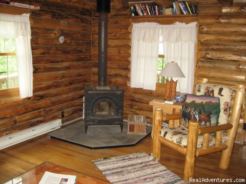 Wood burning stove in The Grandview - Where Nature Plays and Your Heart Sings