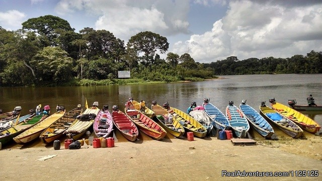 Canoes for a visit to the maroon villages - 3 Guyana's tour in South America