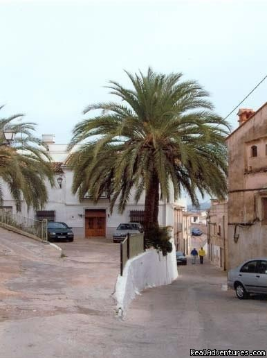 We are situated in the historic part of this Spanish town | Image #2/23 | Apartment, Vacation Rental in Gandia, Valencia