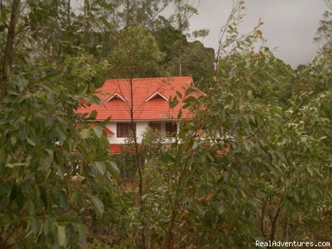Luxury Homestay - Periyar Tiger Reserve, Thekkady: Front View
