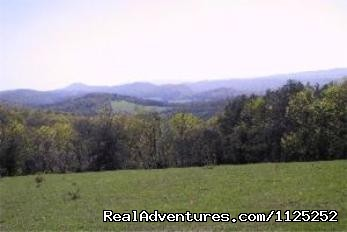 View From Alpine Meadows (#20 of 20) - Shenandoah River Cabins -LionCrowCabins, Luray, VA