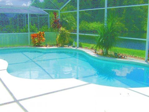 Pool Area - Luxury 3 bedroom Home