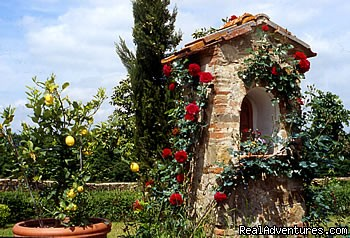 Madonnino in the garden - romantic country B&B POGGIO AL SORBO