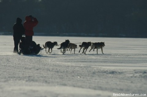 We travel!  Rides at City of Lakes - Dogsled, Climb, Kayak, Sleigh Ride Duluth MN