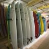 Iguana Surf Shop