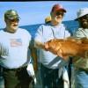 Deep Sea Offshore Freshwater Lake Charter Fishing