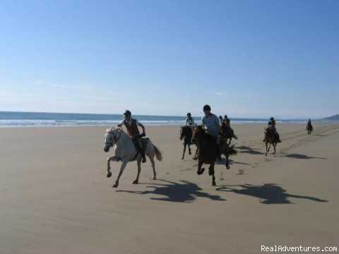 Worldwide Horse Riding Holidays