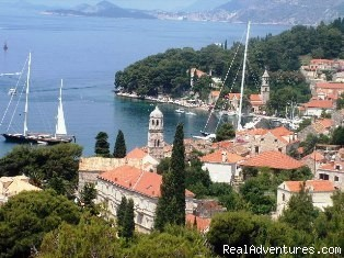 Cavtat Holiday Apartments