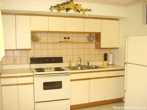 fully equipped kitchen - New Port Richey Vacation House