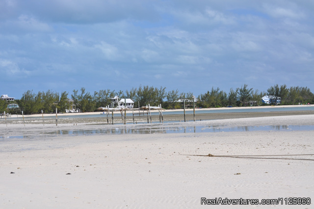 CocoBay at low tide , - Bonefishing or snorkeling at your doorstep