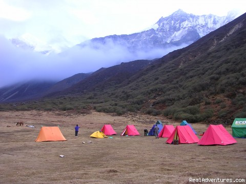 Thangsing, Dzongri&Goechala, Sikkim - Adventure Outings On Weekends