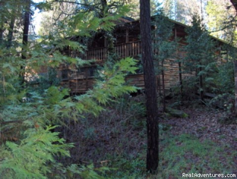 Side View coming up the drive - Nevada City Timber Lodge Family Getaway Vacation