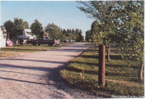 Entrance to the Park - Town & Country Campground