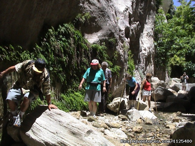 Avagass Gorge Trek Cyprus With Ecologia Tours - Cyprus Walking, Trekking, Bike, Hotels & Apartment