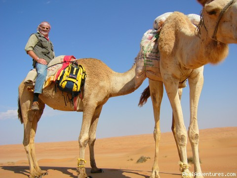 Camel Riding - Adventure Tours in Spectacular Oman