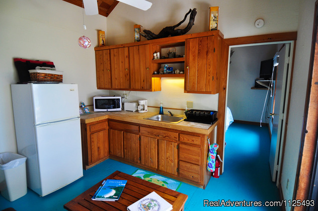 Suite's kitchenette ( double futon not shown) - Eco Sensitive Canvas Cottages with an Ocean View