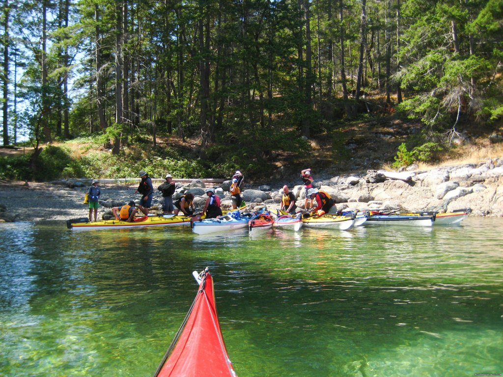 A sheltered bay for camp | Image #11/25 | Sea Kayak Tours Desolation Sound, British Columbia