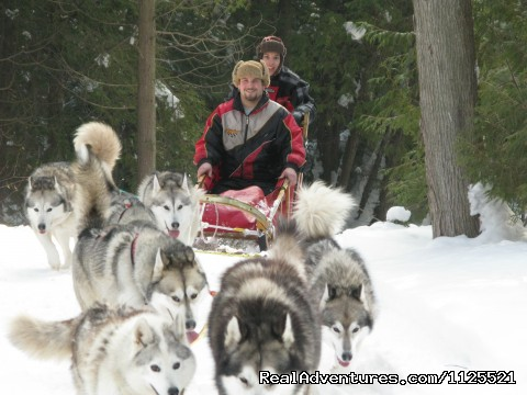 Rv Rental London Ontario >> Singing Dogs-Cabin Rentals, Wiarton, Ontario Vacation Rentals   RealAdventures