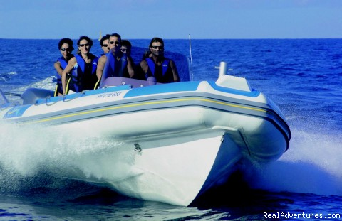 SAINT BARTH ACTIVITIES, ATVs and CAR RENTAL: Fast and Fun