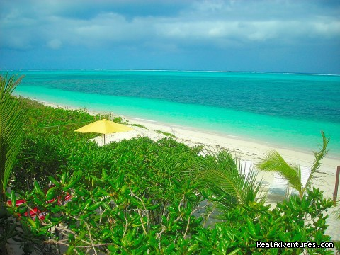 Villa is located right on the ocean and this is the view! - Oceanfront Villa on Grace Bay Beach