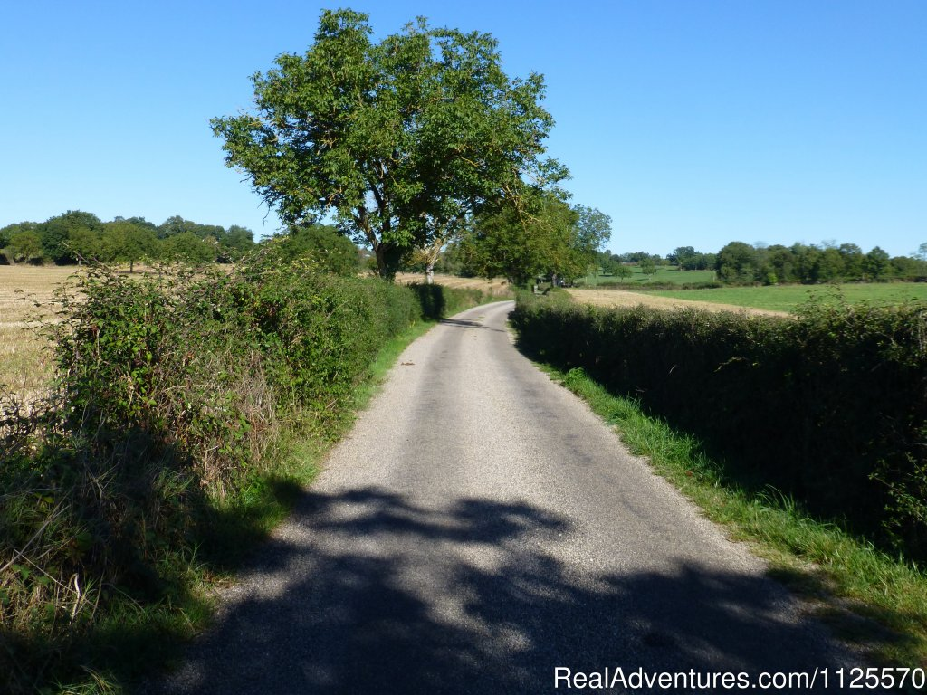 A cyclists dream | Image #11/17 | Cycle The Dordogne