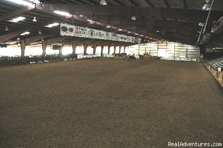 Arena Floor - Experience Texas Trail Rides