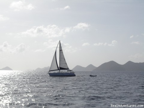 Under Sail - Family and Friends Dream Sailing Vacations