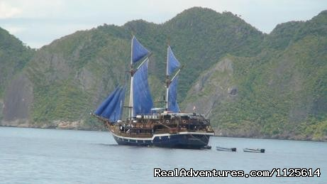 Felicia Liveaboard a Journey to Raja Ampat - Enjoy watching bird and Komodo Dragona nd Diving