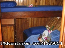 Felicia for her  Sharing Guest in Twin Bed - Enjoy watching bird and Komodo Dragona nd Diving