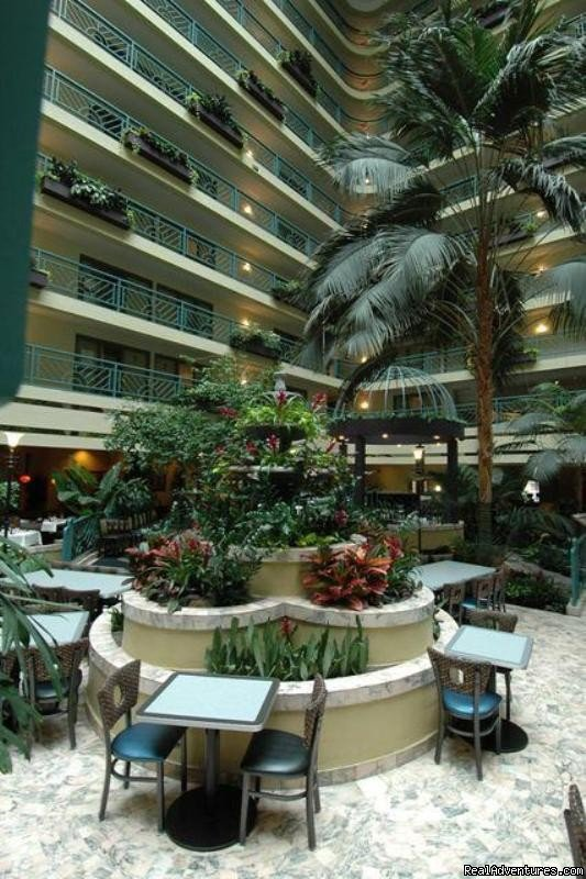 Atrium | Image #4/8 | Embassy Suites Hotel Minneapolis-Airport