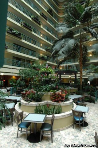 Atrium - Embassy Suites Hotel Minneapolis-Airport