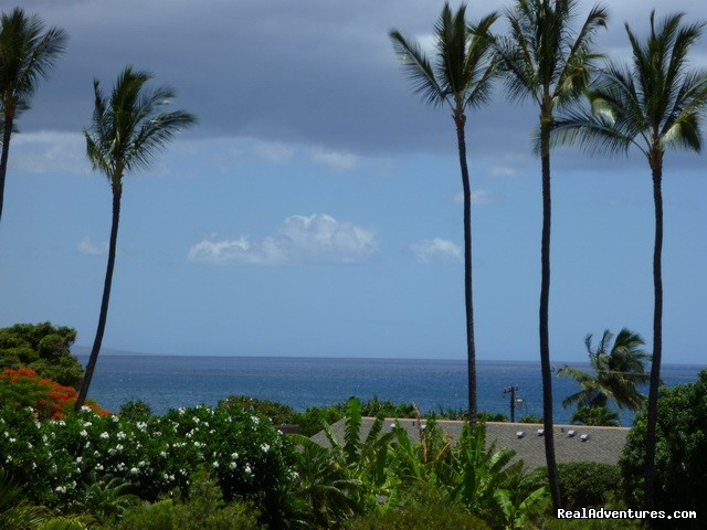 Full on ocean view from all rooms and lanai