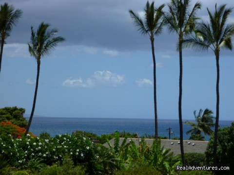 Full on ocean view from all rooms and lanai - OCEAN VIEW FROM ALL ROOMS-Top Floor, End Unit