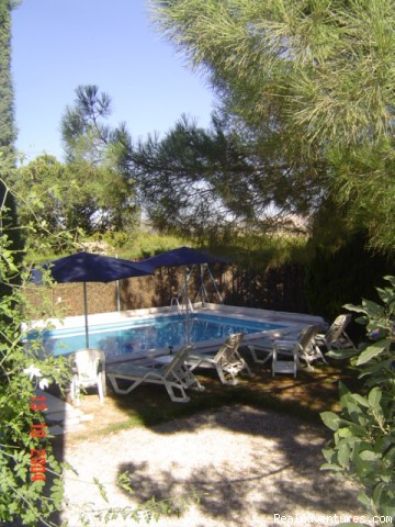 relax by the pool - Rural B&B in Murcia