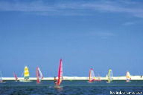 Noosa - Windsurfing - Study in Paradise - Global Village Noosa
