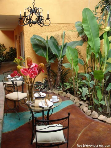 Breakfast Patio - Hotel  Casa 69